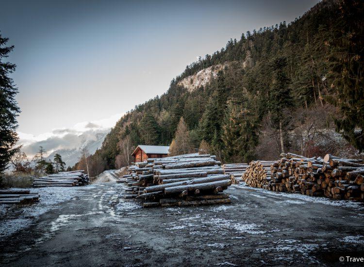 Forstrevier Visp & Umgebung